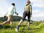 Палки для ходьбы, купить скандинавские палки, скандинавская ходьба, интернет-магазин скандинавских палок, купить недорого