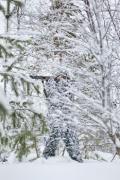 Костюм для охоты JahtiJakt Rosto Snow Camo